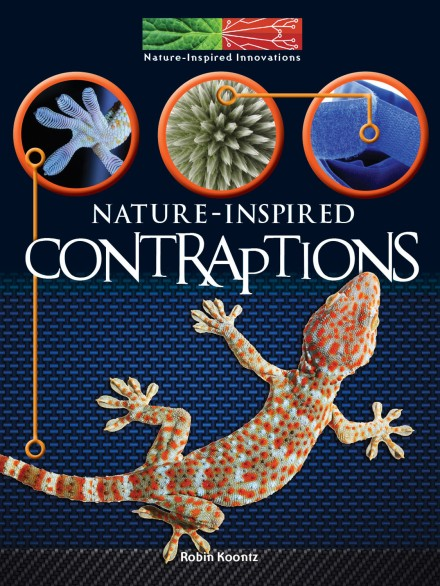nature inspired contraptions_cov